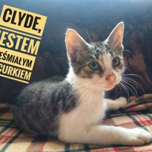 Clyde znalazł kochającą rodzinę