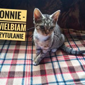 Bonnie - ma już kochającą rodzinę!